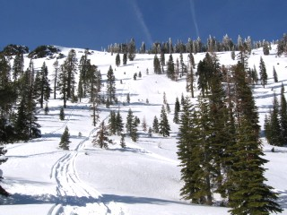 California Snowmobiling Reports and Information for the California Snowmobile Rider from Snow Tracks