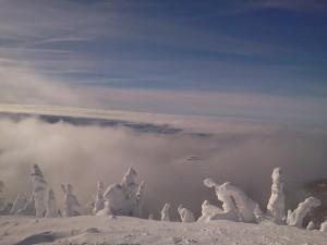 2014.01 Snow Pic3